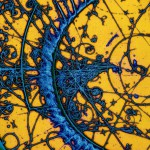 differenza tra fisica ed ingegneria nucleare